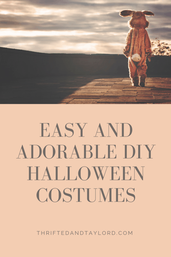Easy and Adorable DIY Halloween Costumes   Thrifted & Taylor'd
