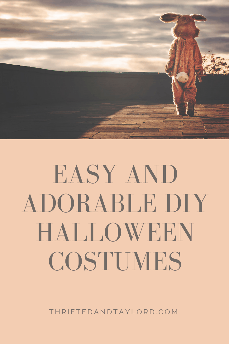 Easy and Adorable DIY Halloween Costumes