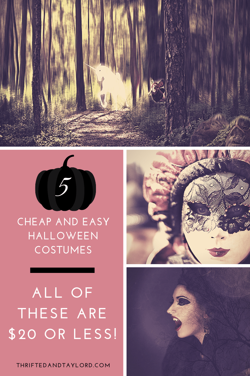 5 Cheap and Easy Halloween Costumes | All Under $20