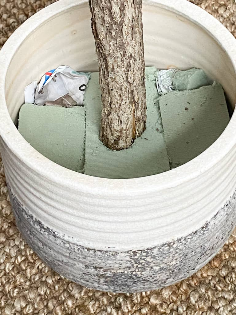 The tree branch used as the trunk of my fake tree sitting inside the hole I carved out of the floral foam.