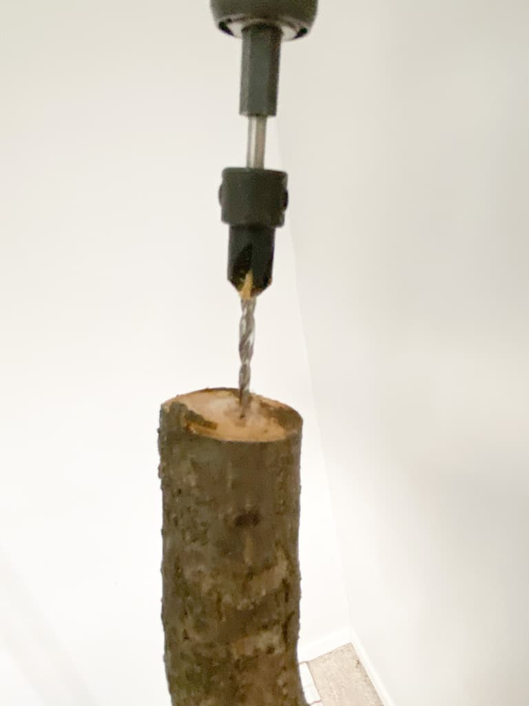 The drill I used positioned on the top of the tree trunk ready to drill the next hole.